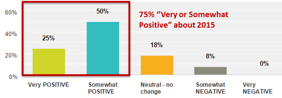 Emergo Industry Survey 2015 - Optimism About the Overall Business Environment