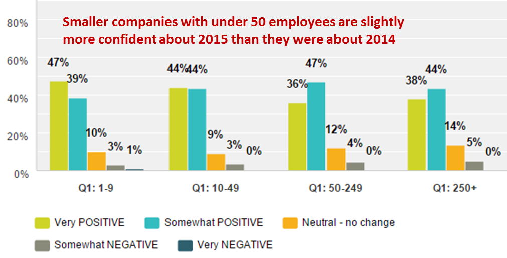 Emergo Industry Survey 2015 - Outlook for Your Company in 2015