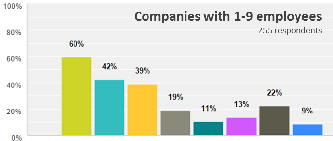 Emergo Industry Survey 2015 - Biggest challenges for companies with 1-9 employees