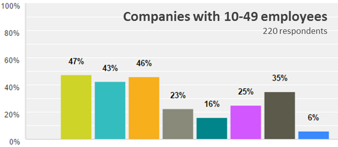 Emergo Industry Survey 2015 - Biggest challenges for companies with 10-49 employees