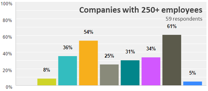Emergo Industry Survey 2015 - Biggest challenges for companies with 205+ employees