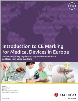 Download our whitepaper Introduction to CE Marking for Medical Devices in Europe