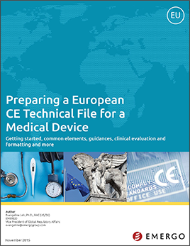 Download our white paper on European Technical Files For CE Marking Of Medical Devices