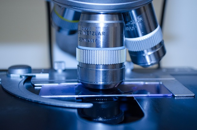 US FDA guidance on animal studies for medical devices